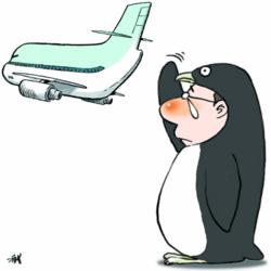 Отец пингвин